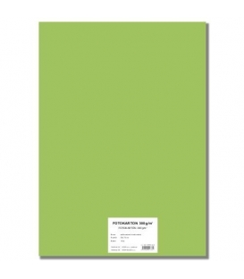 Fotokarton A4/10/300g světle zelený